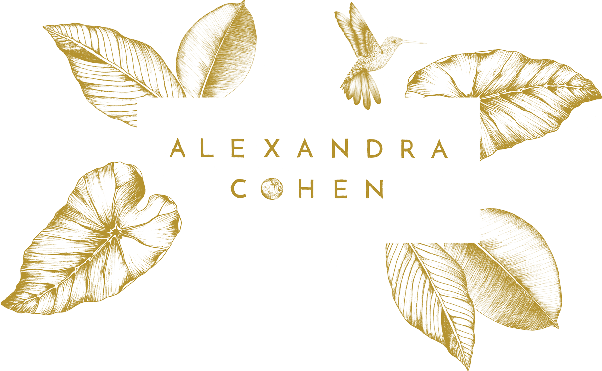 Alexandra Cohen Photography